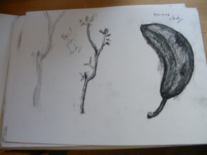 Basil plant, (left) pencil, and brown banana, pencil and charcoal.
